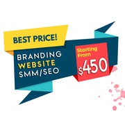 Get your own website designed at as low as $450 (Free Domain + Hosting